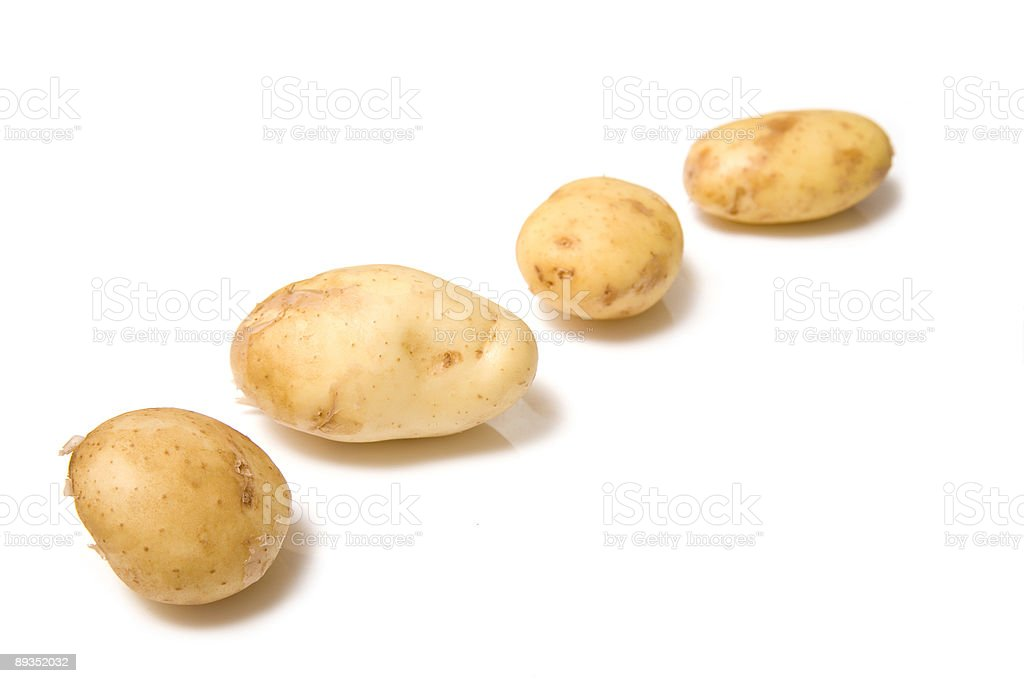 Jersey royal potatoes isolated on white. stock photo