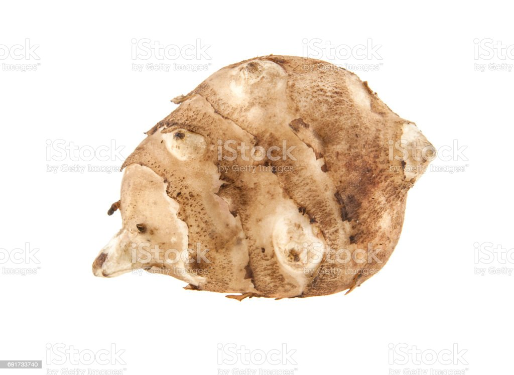 Jerusalem artichoke isolated on white background stock photo