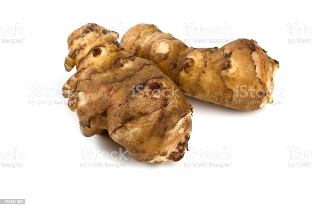 jerusalem artichoke isolated stock photo