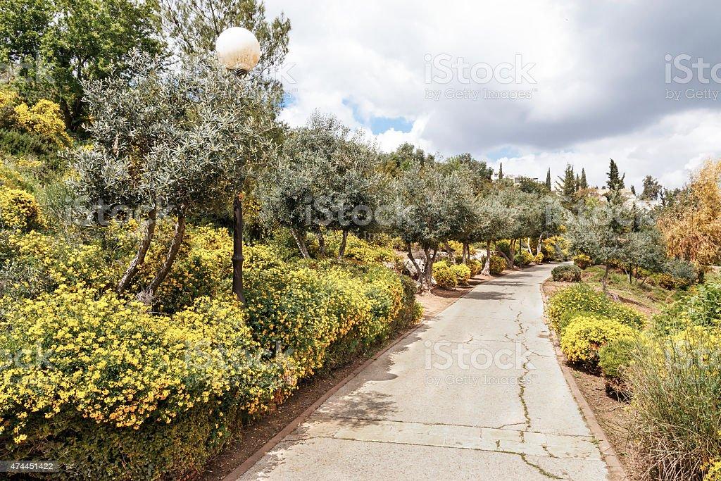 Jerusalem Haas-Sherover Promenade in the Spring stock photo
