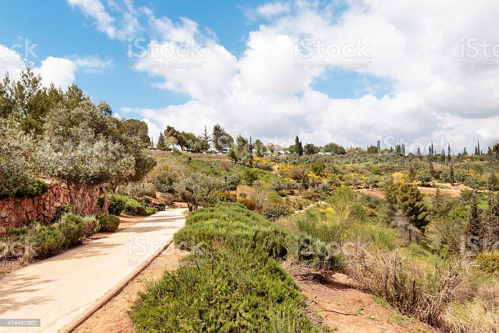 Jerusalem Sherover-Haas Promenade in the Spring stock photo