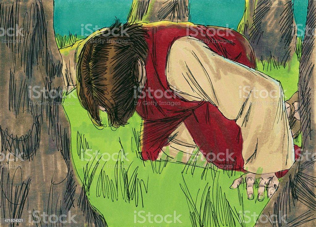 Jesus Prays in the Garden of Gethsemane stock photo