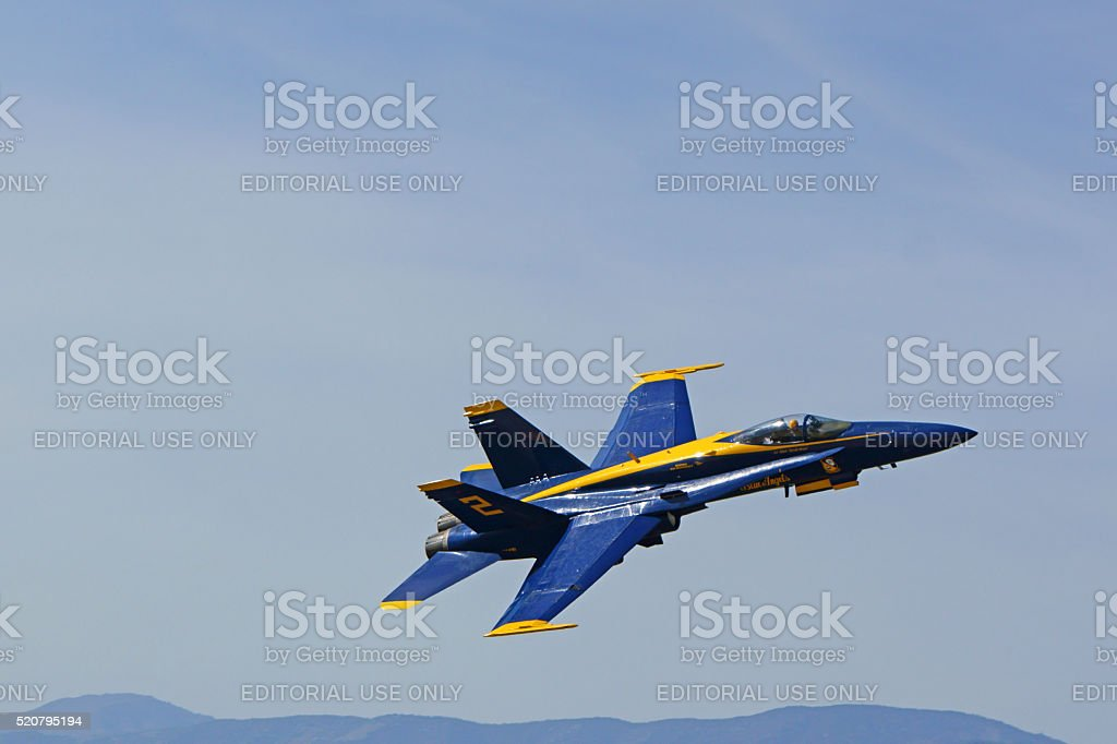 Jet fighter airplane Blue Angels F-18 Hornet stock photo