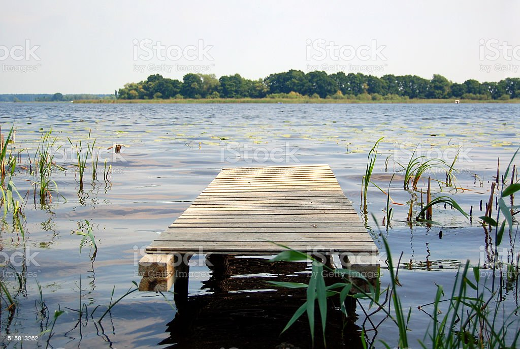 jetty on a lake with reed and forests stock photo