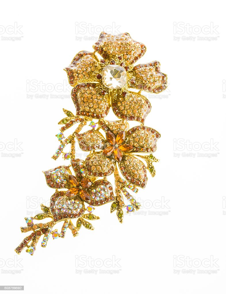 jewelry expensive Brooch stock photo