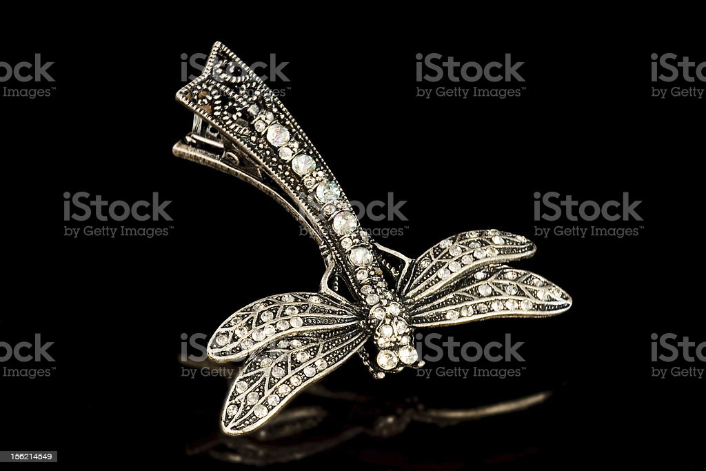 Jewelry-dragonfly brooch royalty-free stock photo