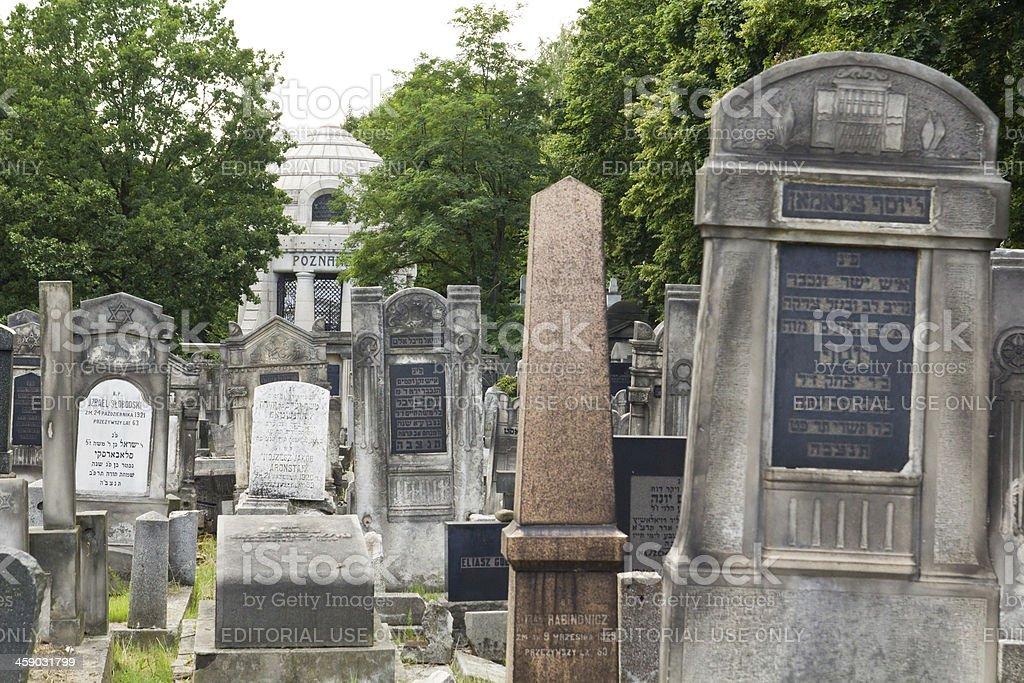 Jewish cemetery in Lodz royalty-free stock photo