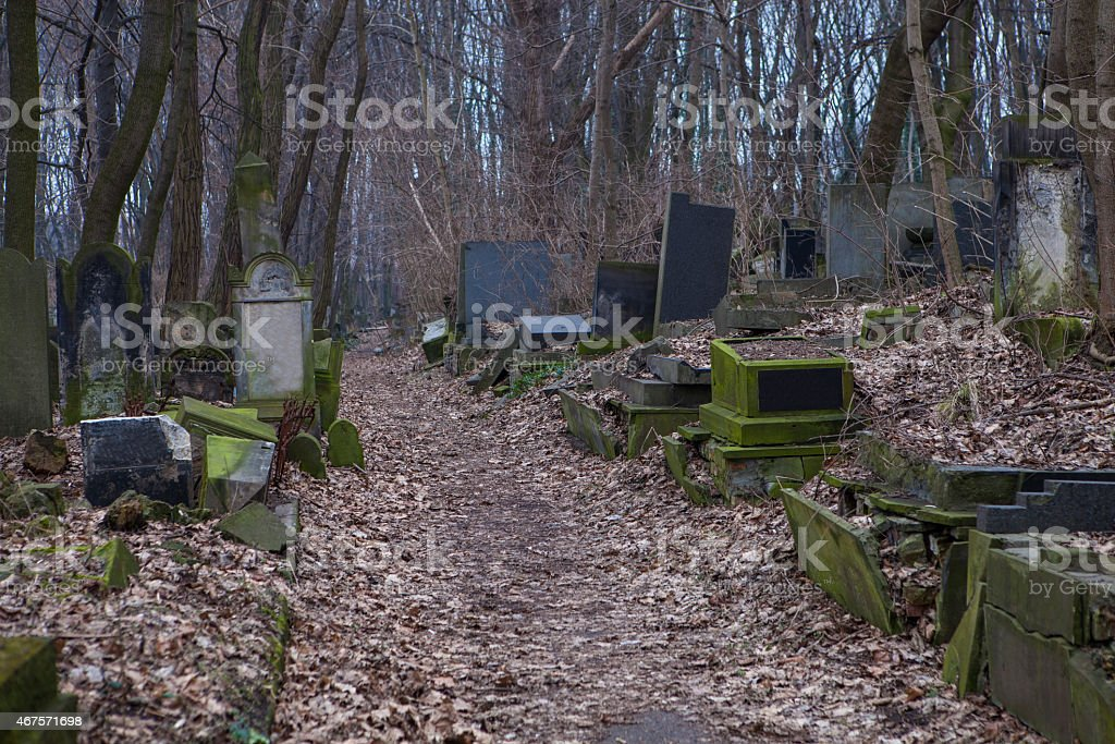 Jewish cemetery in Warsaw stock photo