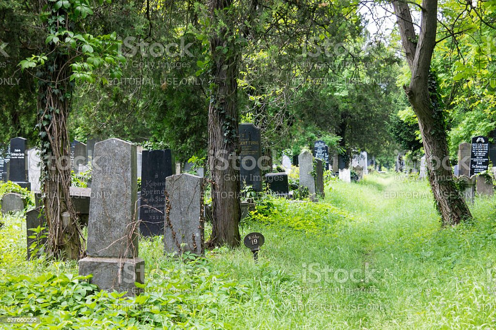 Jewish part of Vienna Central Cemetery stock photo