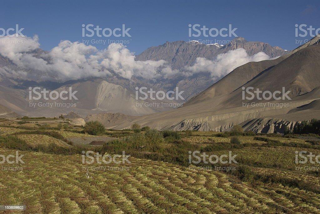 Jhong Khola valley fields royalty-free stock photo