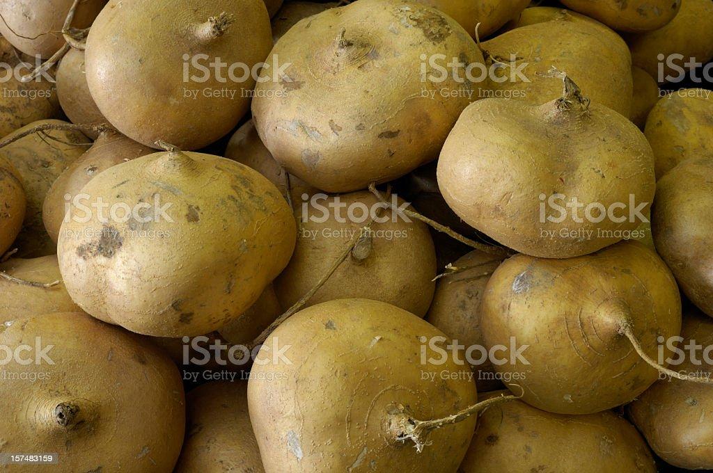 Jicama on Display in a Produce Market stock photo