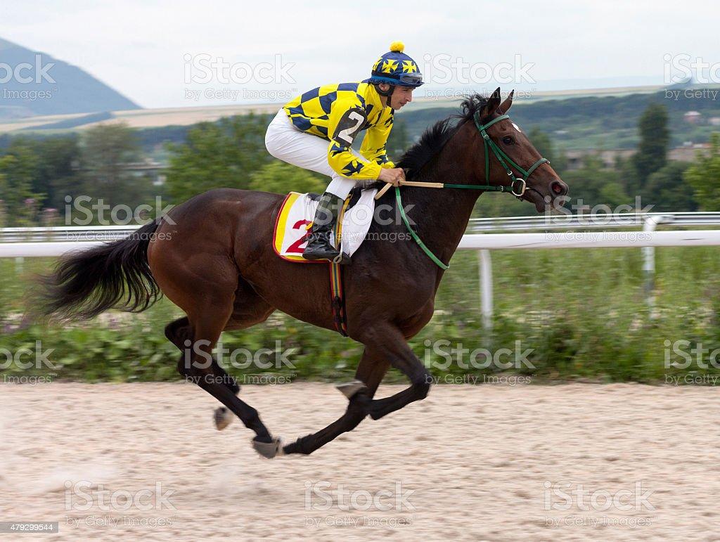 Jockey on horse stock photo