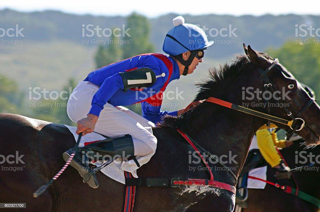 Jockey on horse. stock photo