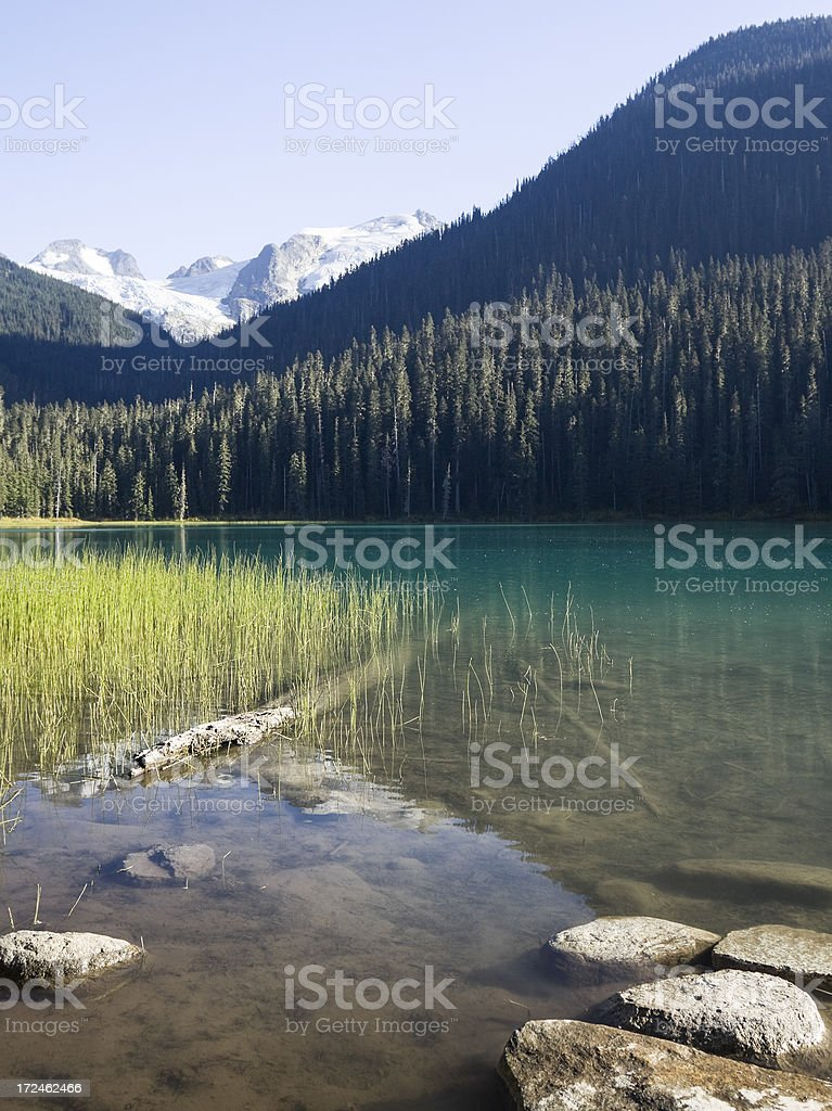Joffre Lake royalty-free stock photo