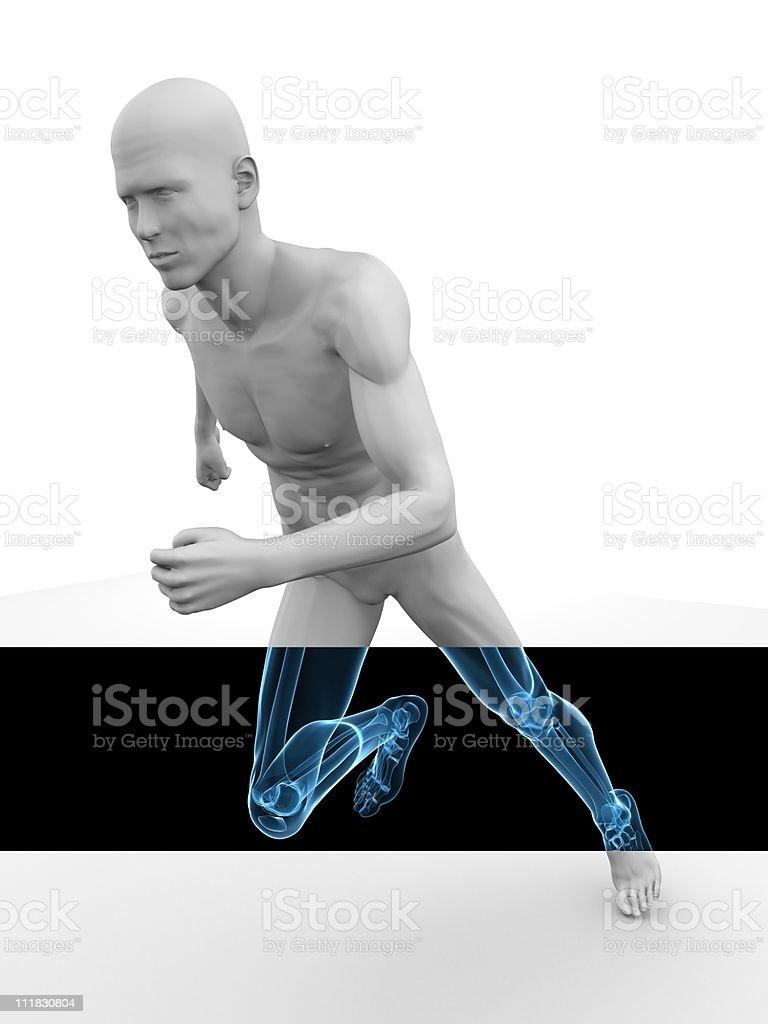 jogger - x-ray royalty-free stock photo