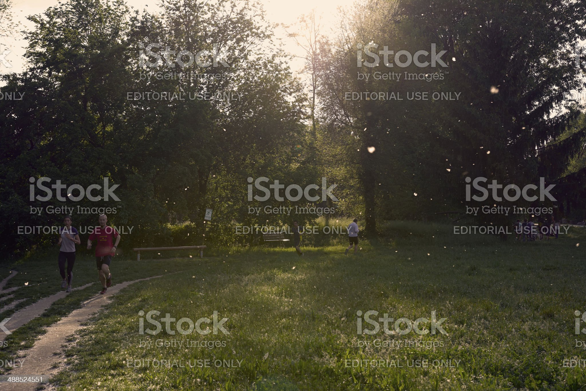 Jogging at the city park royalty-free stock photo