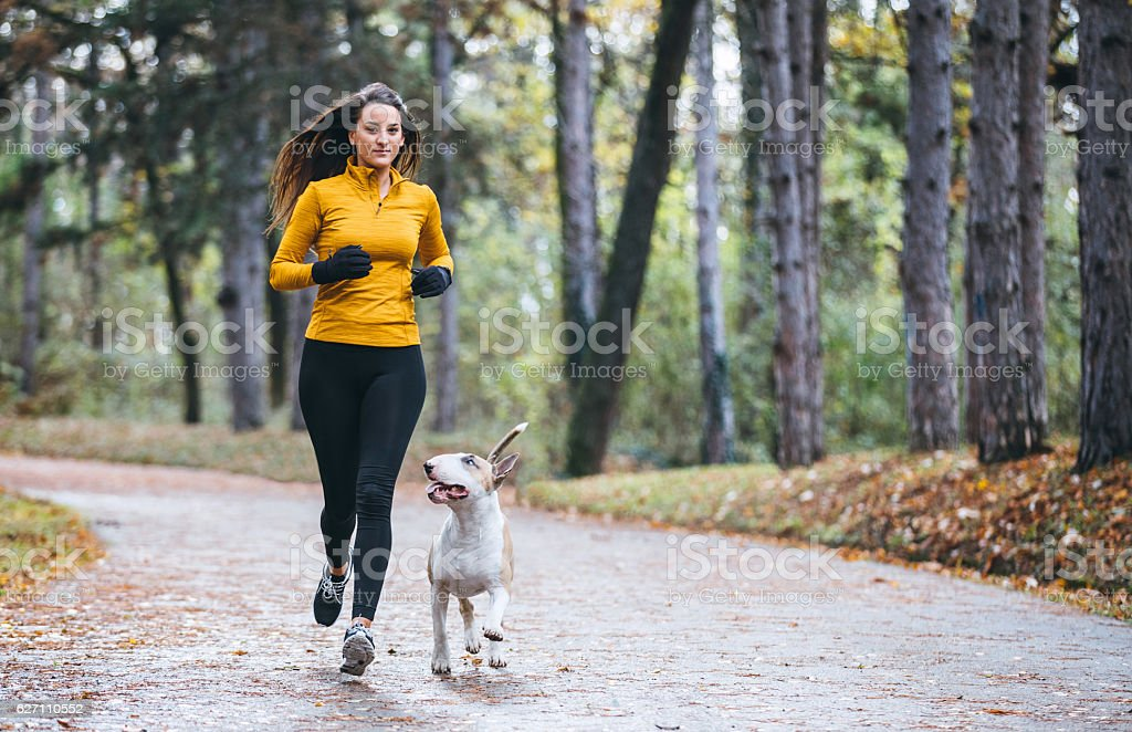 Jogging in the morning with the dog stock photo