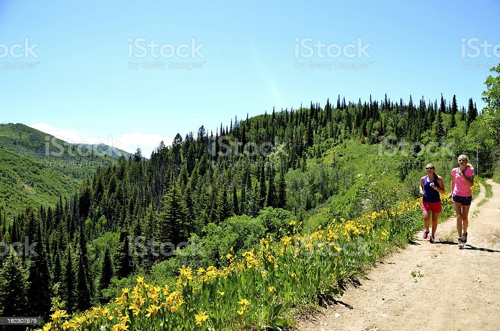 Jogging on a Trail in the Colorado Rocky Mountains stock photo