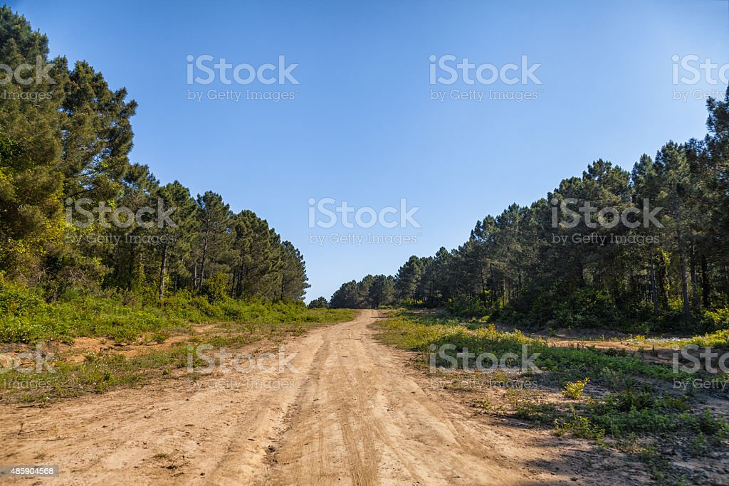 jogging path stock photo