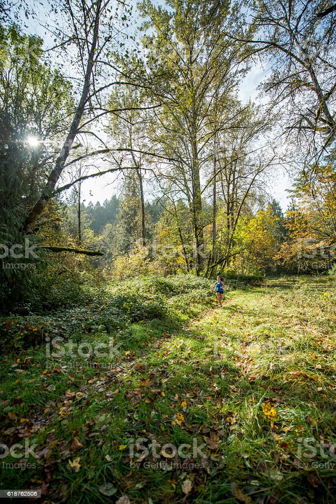 Jogging Through the Forest on a Sunny Day stock photo