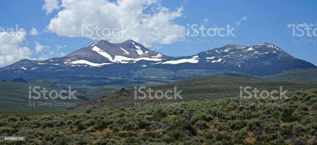 John Muir Wilderness Sage stock photo