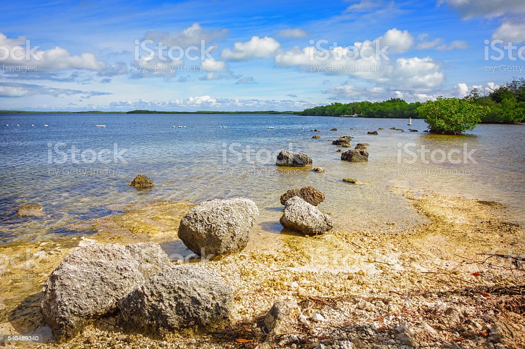 John Pennekamp Coral Reef State Park Key Largo Florida Keys stock photo