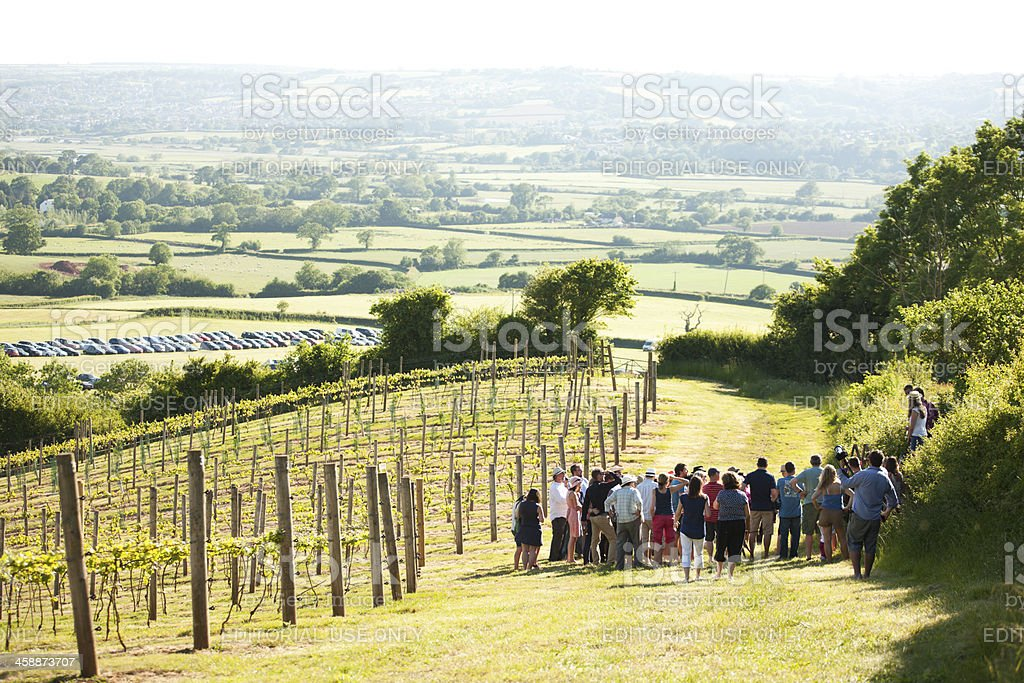 Joining a vineyard tour royalty-free stock photo