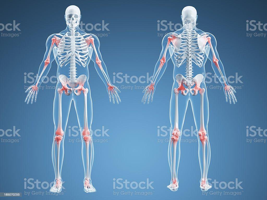 Joint Pain Illustration royalty-free stock photo