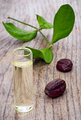 Jojoba leaves, seeds and oil on rustic wooden table