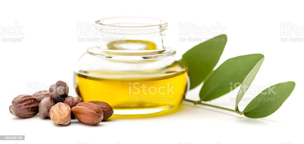Jojoba seeds and leaves stock photo