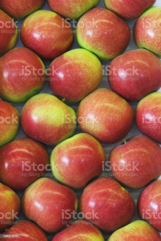 Jonamac Apples. Canfield Fair, Youngstown, Ohio, USA. stock photo