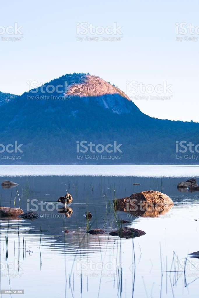 Jordan Pond in the morning stock photo