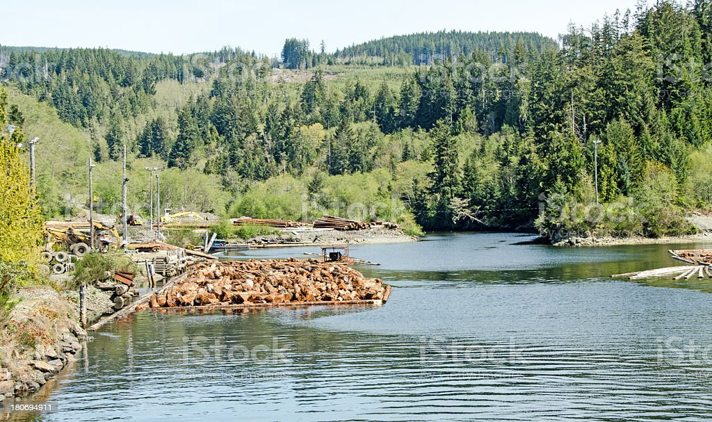 Jordan River Log raft royalty-free stock photo