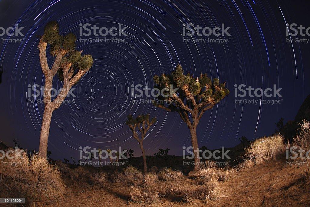Joshua Tree National Park Star Trails stock photo