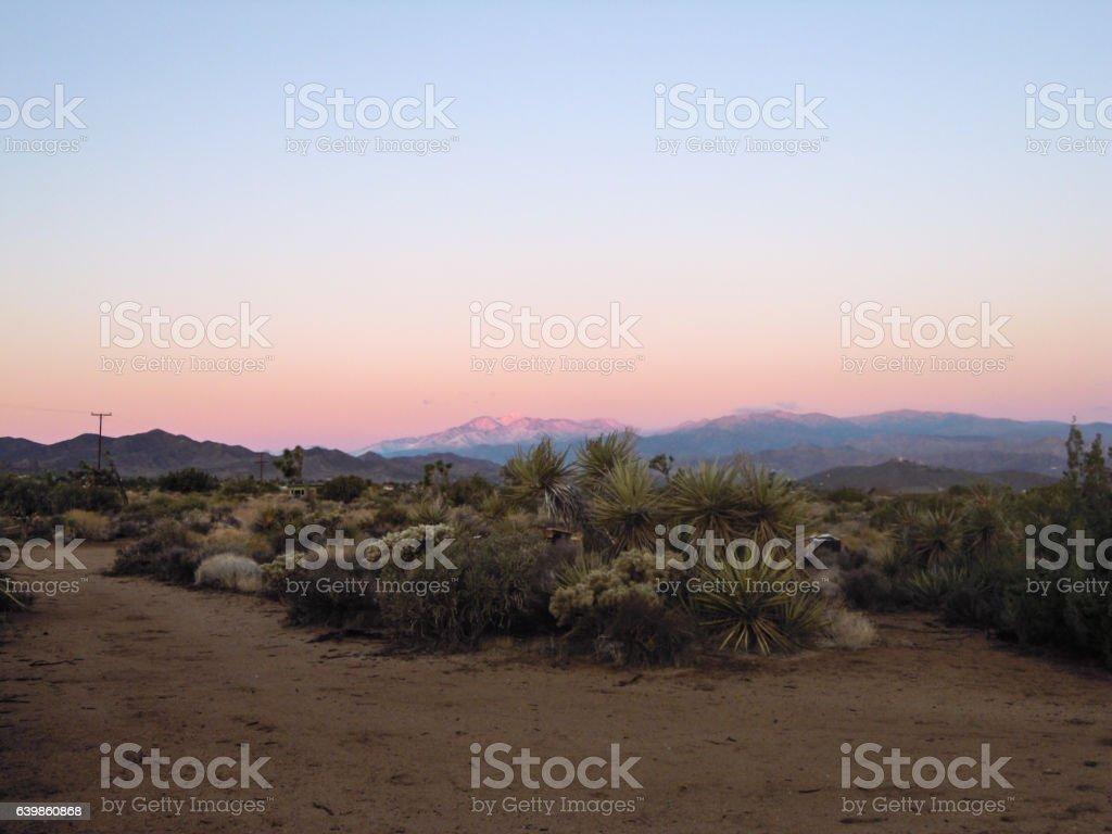 Joshua Tree, Yucca Valley, California - Stock Image stock photo