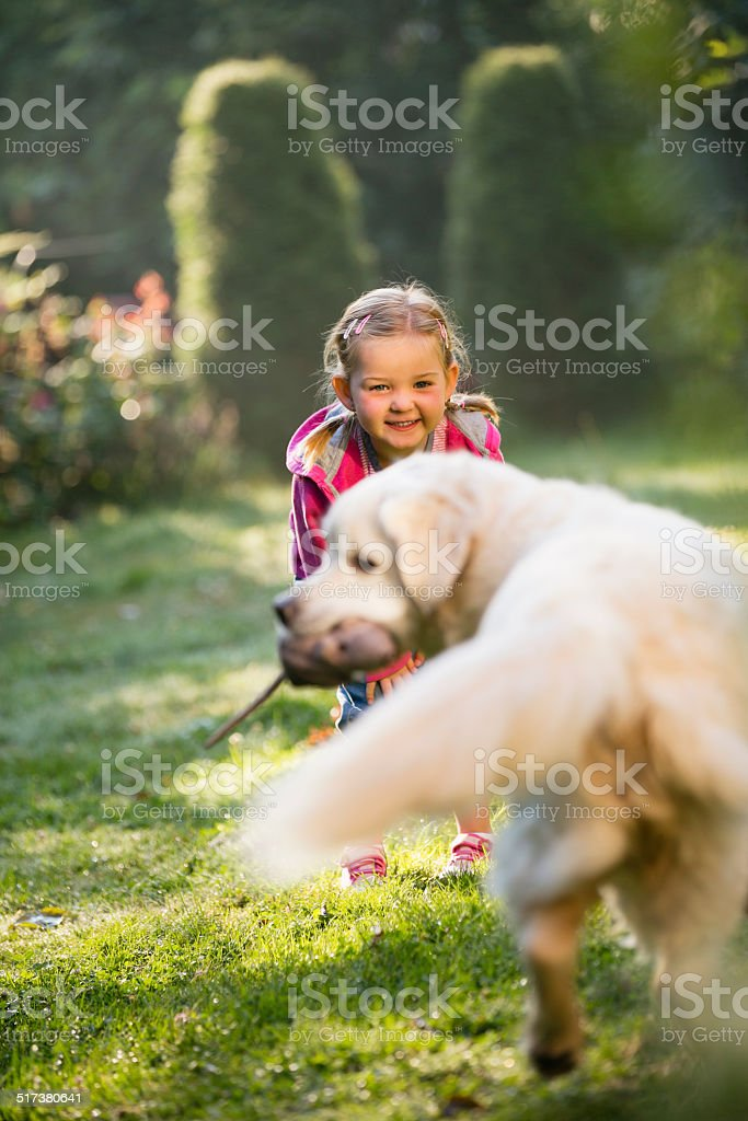 Joung girl playing with golden retriever in garden stock photo