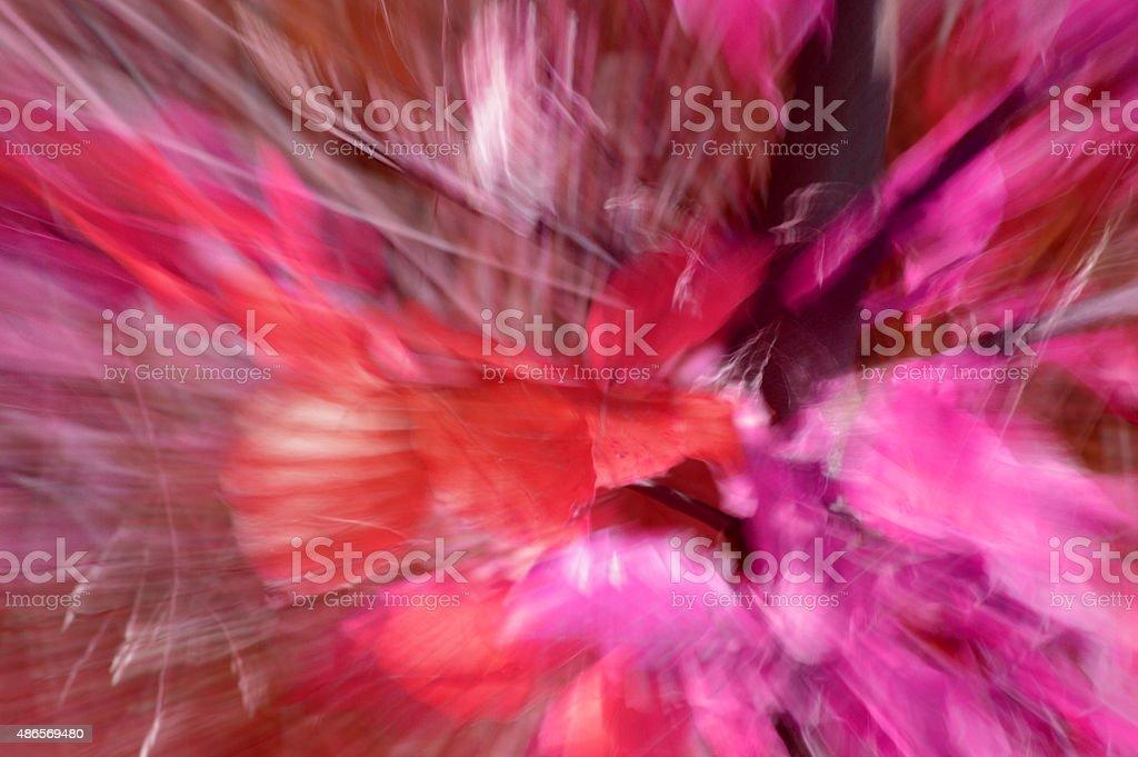 Journey through the mind stock photo