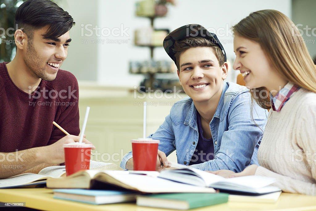 Joyful group studying royalty-free stock photo