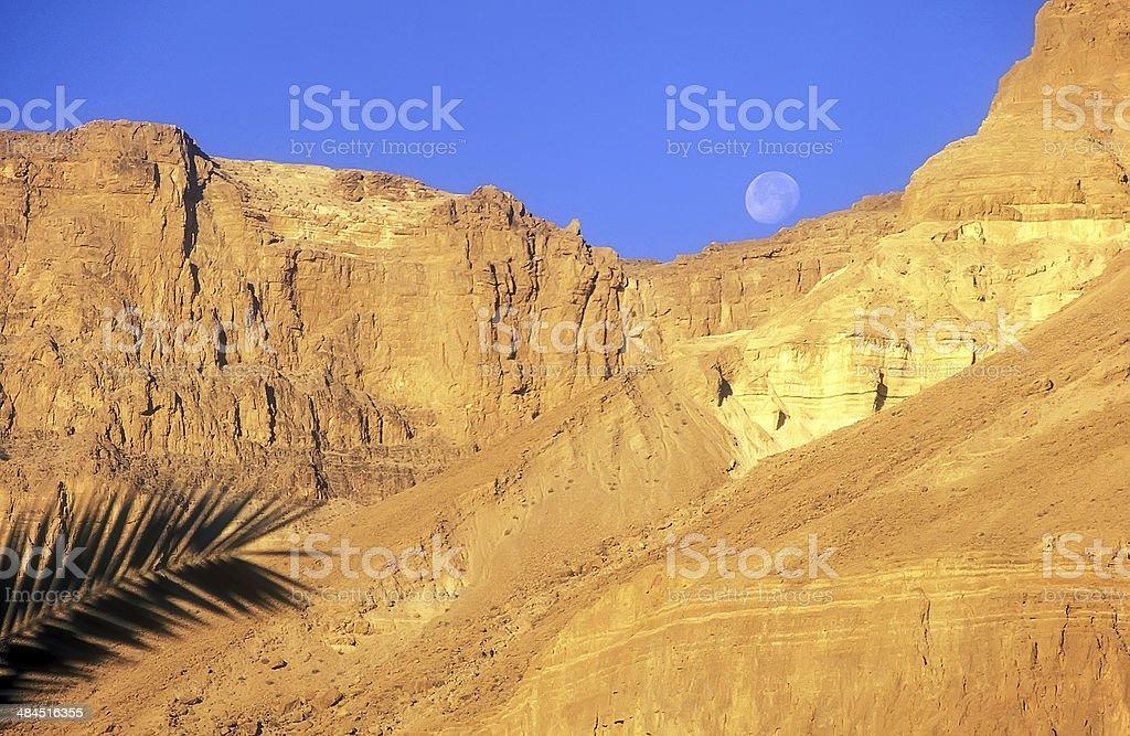 Judaean Desert, Israel royalty-free stock photo