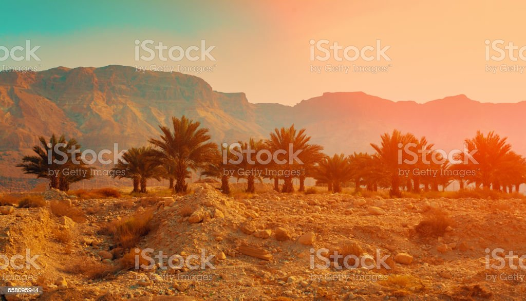 Judean desert in Israel at sunset. stock photo