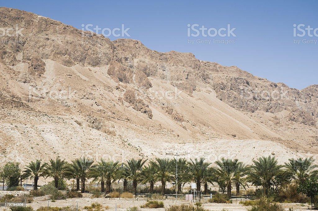Judean Desert, Israel stock photo