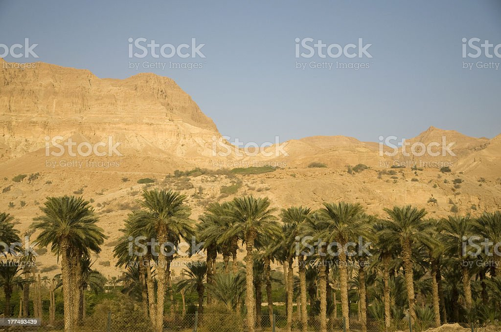 Judean Mountains, Dead sea stock photo