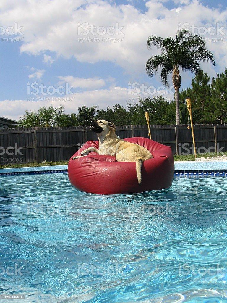 Judith Floating stock photo