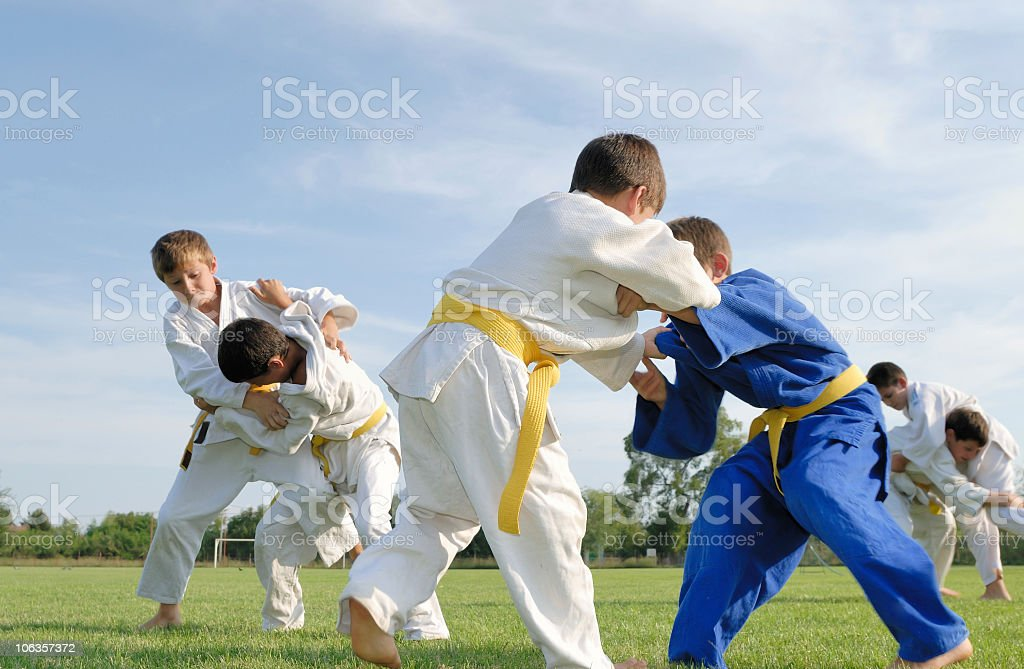 Judo royalty-free stock photo