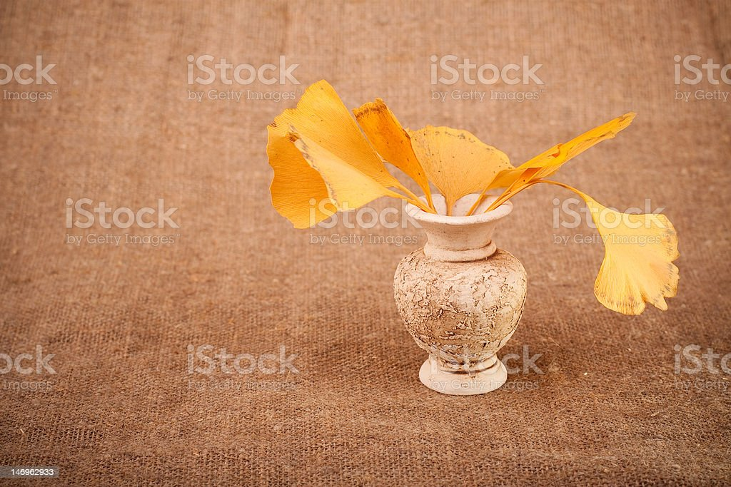 Jug with leaves royalty-free stock photo