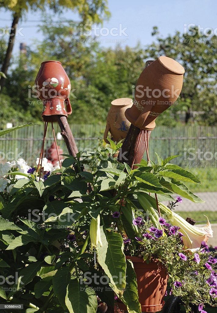 jugs and flowers in the garden stock photo