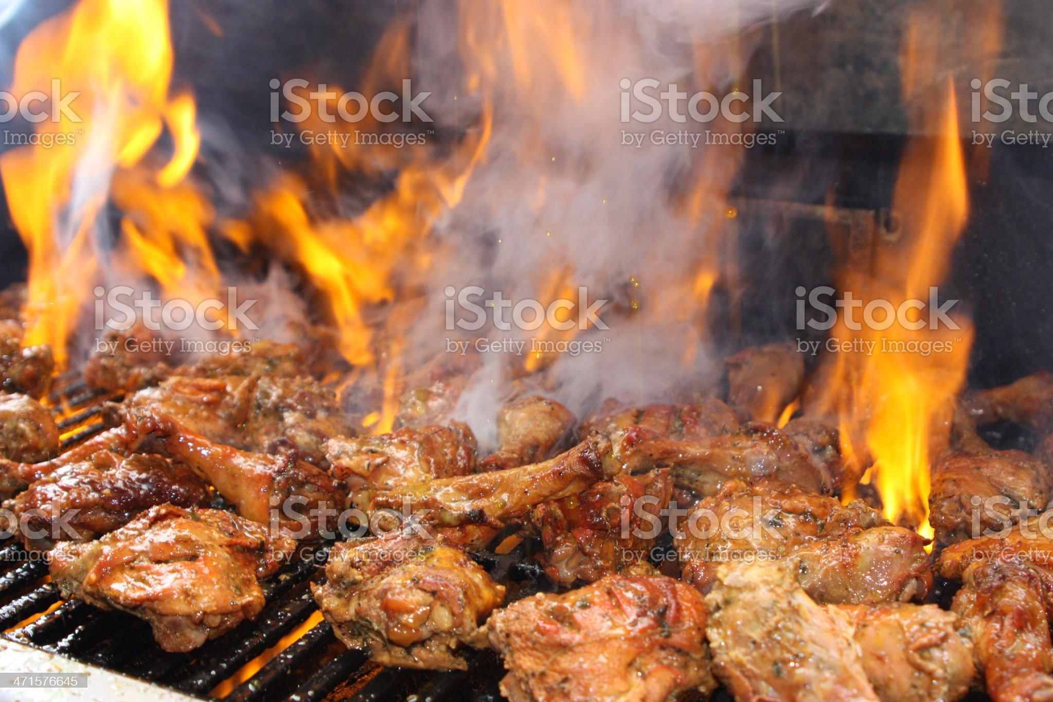 Juicy Chicken royalty-free stock photo