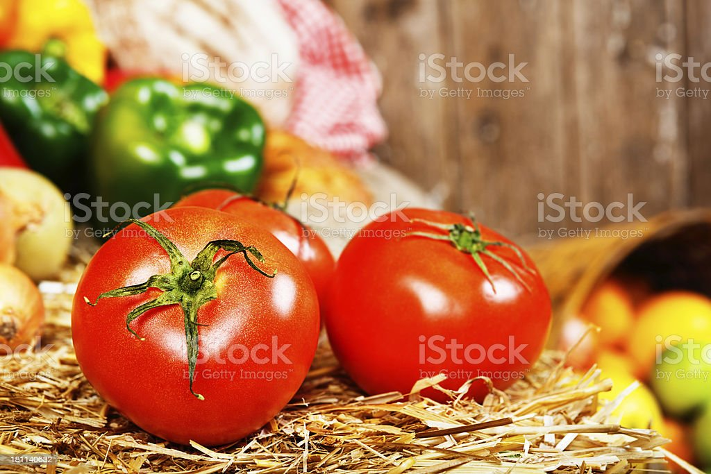 Juicy red tomatoes backed by other fresh vegetables on straw royalty-free stock photo