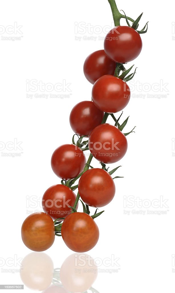 juicy red tomatoes royalty-free stock photo