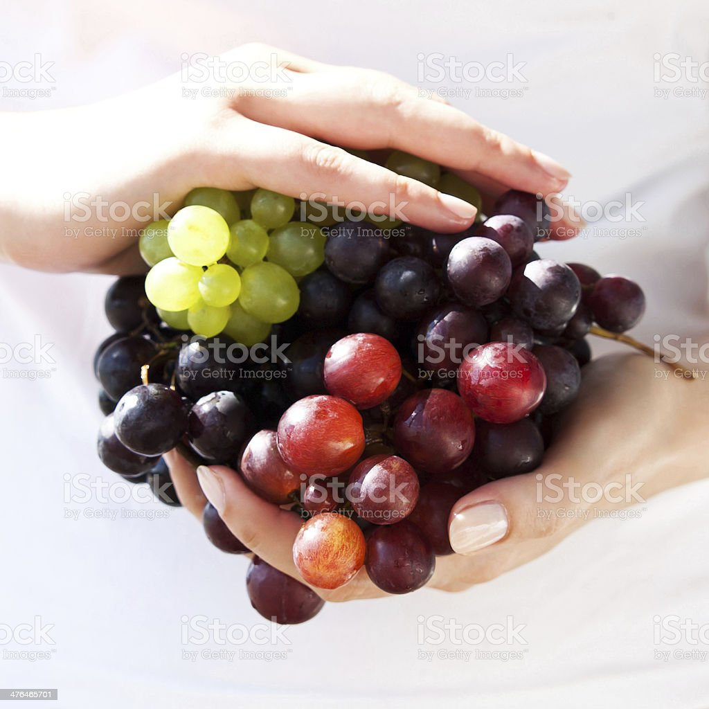 Juicy, sunny grapes in hand royalty-free stock photo